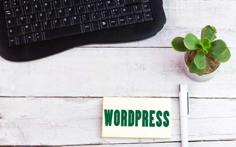 what website platform is best tips from She Rocks Digital